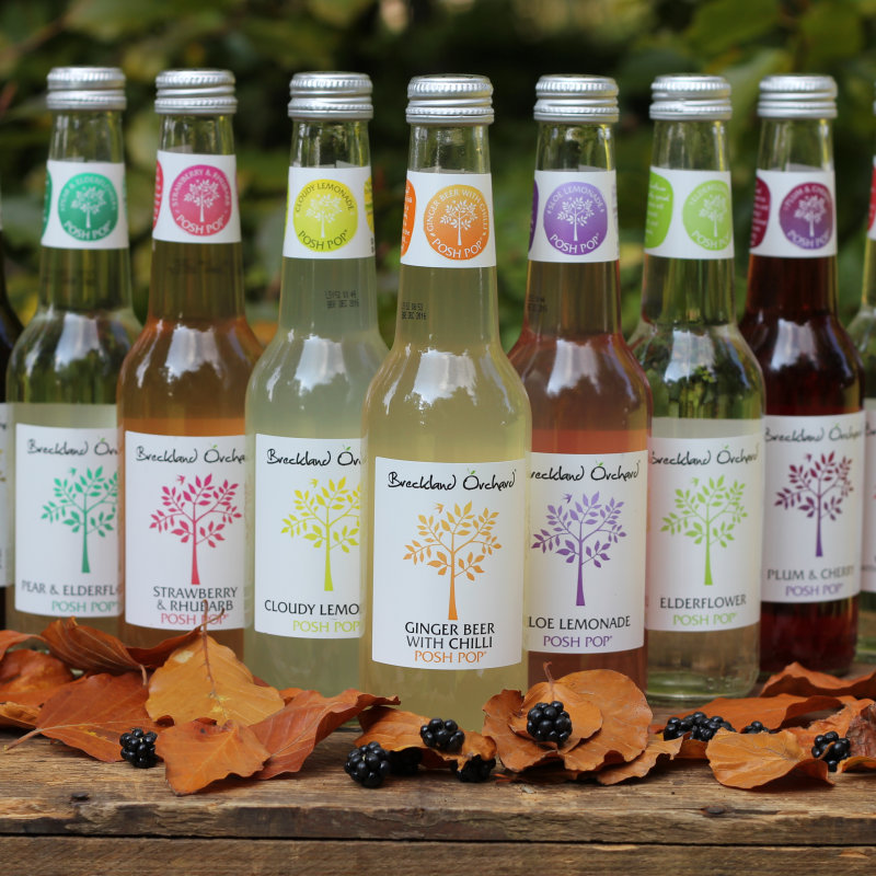 Breckland Orchard - At Breckland Orchard we make fabulous sparkling soft drinks - or Posh Pop ® as I prefer to call them. My simple aim is to make the best tasting soft drinks ever.....I hope you'll agree!