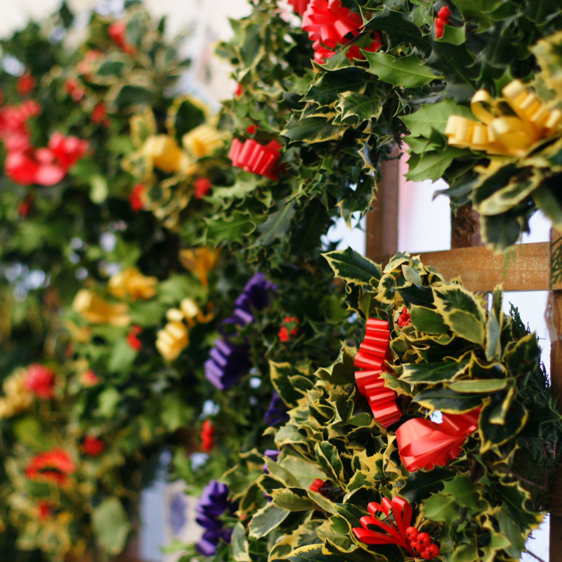 Lilac Nurseries - Handmade holly wreaths and crosses, pot grown hyacinths, planted tubs and bowls. Poinsettias and Christmas cacti. - Deepdale Christmas Market - Christmas shopping for presents, decorations and great food & drink from 100+ stalls in large marquees around the Dalegate Market shops & caf� and in St Marys Church - A fabulous start to the festive season & a great reason to visit the beautiful North Norfolk Coast, England, UK - Friday 2nd, Saturday 3rd & Sunday 4th December 2016
