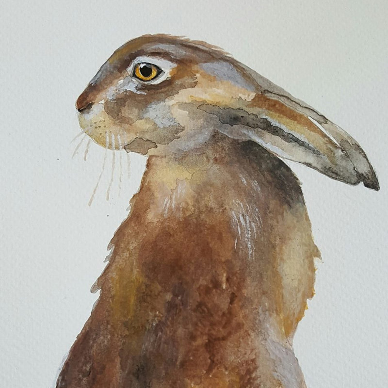 Louise Money Originals - Hand painted British bird and wildlife images printed on Cards, bags, stationery, prints and a selection of original gifts. Printed in Norfolk and inspired by the local wildlife and scenery. - Deepdale Christmas Market at Dalegate Market | Shopping & Cafe - Friday 1st, Saturday 2nd & Sunday 3rd December 2017 - Christmas shopping for presents, decorations and great food & drink from 120+ stalls in large marquees around the Dalegate Market shops & café and in St Marys Church at the Deepdale Christmas Market, North Norfolk Coast