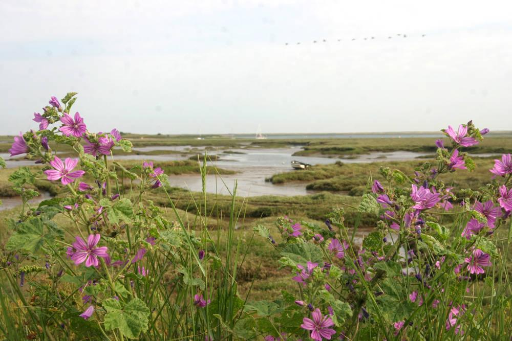 Cool Place of the Day: Norfolk Coast Path - At 45 miles long, the Norfolk Coast Path is one of the UK's more manageable long-distance footpaths, weaving its way along the coast from one old-fashioned seaside resort to another – Hunstanton in the west to Cromer in the east. - Dalegate Market | Shopping & Café, Burnham Deepdale, North Norfolk Coast, England, UK
