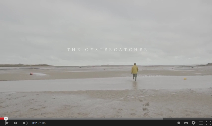 Visit North Norfolk February Film - The Oystercatcher #YEAROFDISCOVERY | Meet Richard, of Brancaster Staithe Oysters, who has been fishing the waters of North Norfolk all his life.  Working in isolation in tranquil surroundings, Richard nurtures his Oysters before harvesting them and supplying North Norfolk's very best hotels.
