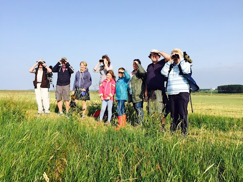 Beginners Guided Wildlife Walk | A casual walk along flat terrain for novice birdwatchers and those new to the North Norfolk Coast.  Book in advance in the One Stop Nature Shop. - Dalegate Market | Shopping & Café, Burnham Deepdale, North Norfolk Coast, England, UK
