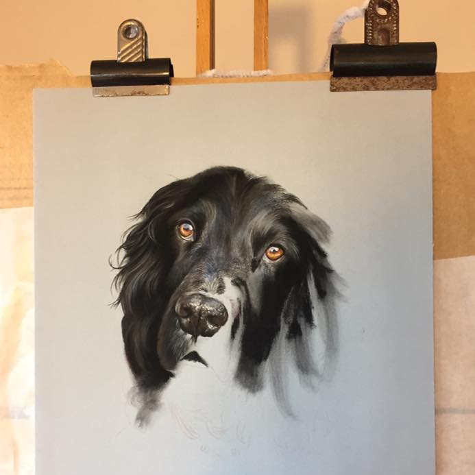 Emily Rose Fine Art - Emily Rose is a young wildlife and pet portrait artist who specialises in pastels. Her delicate and detailed work brings movement to the page and paintings to life.  - Deepdale Spring Market | Friday 29th to Sunday 31st March 2019