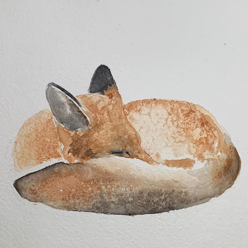 Ros Reader Artist - Contemporary wildlife, bird and nature artist specialising in watercolours and self made botanical inks. Original 2D and 3D forms along with cards and prints produced from images of original pieces.  - Deepdale Spring Market | Friday 27th to Sunday 29th March 2020
